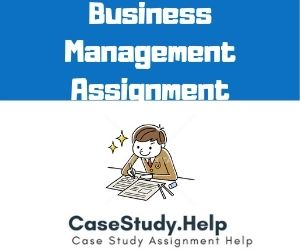 Business Management Assignment
