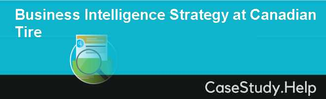 Business Intelligence Strategy at Canadian Tire