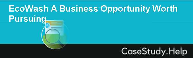 EcoWash A Business Opportunity Worth Pursuing