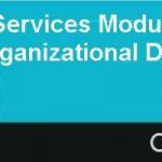 Professional Services Module Three Internal Strategy of Organizational Design