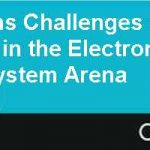 Target Systems Challenges and Opportunities in the Electronic Health Information System Arena