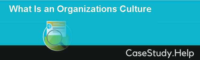 What Is an Organizations Culture